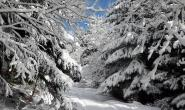 photo-hiver.jpg